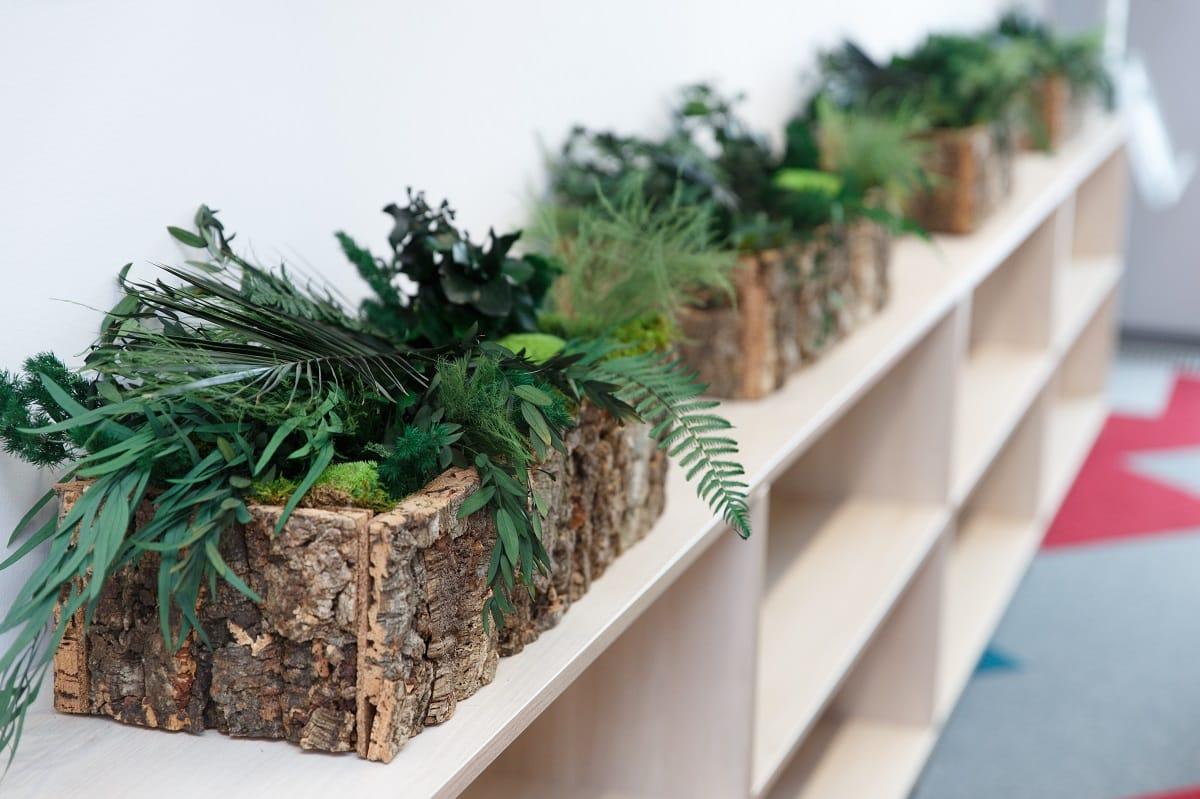 Biophilic design | Pflanzen | Raumbegruennung | Oracle | NATURALDESIGN.at
