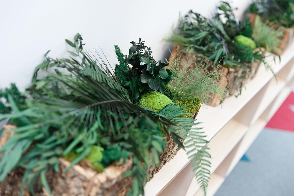 pflanzen-kork-naturaldesign.at
