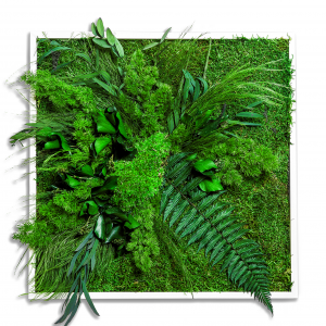 Moosbild GREENIN Leafy_Vorschaubild_NATURALDESIGN.at