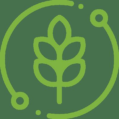 natuerlich oekologisch moosbilder greenin
